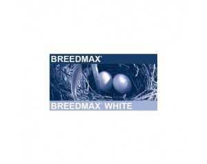 BREEDMAX WHITTE 1 KG