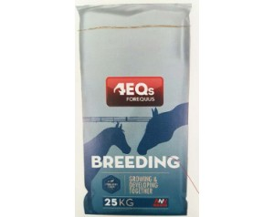 4EQs  Breeding  Mare & Foal